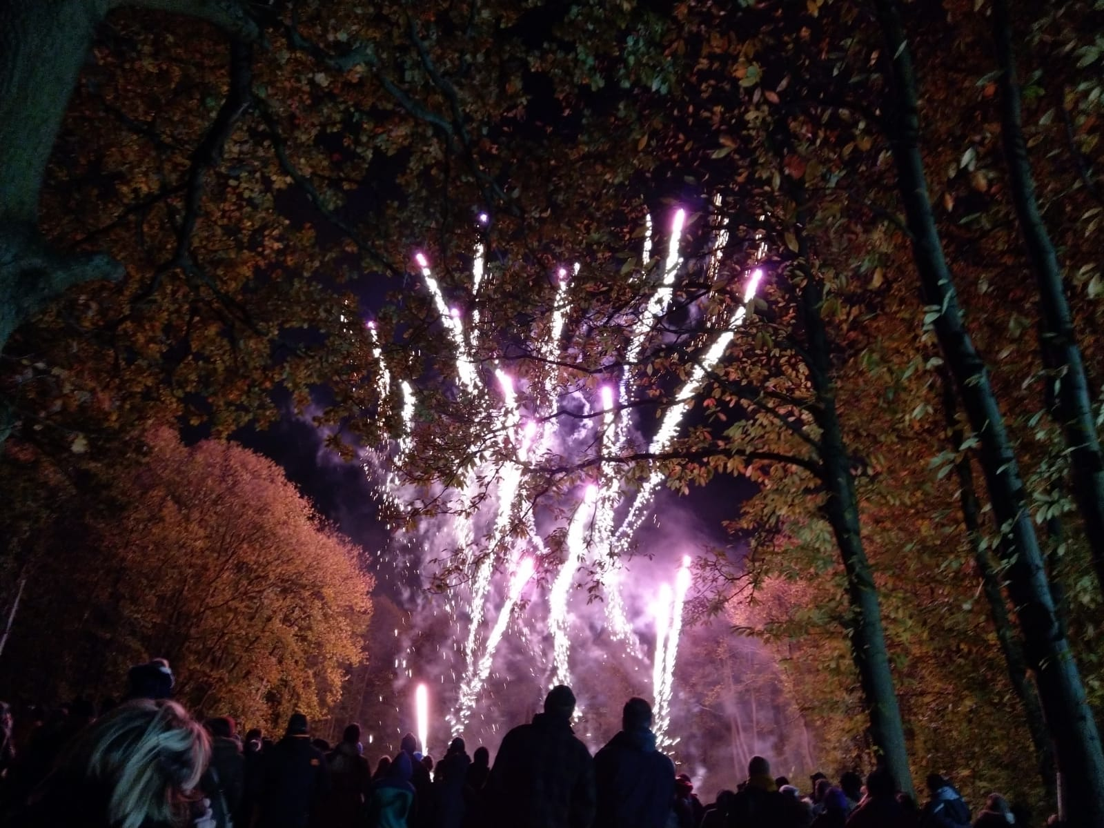 Buckmore Park Scout Campsite Fireworks – 26th October 2019