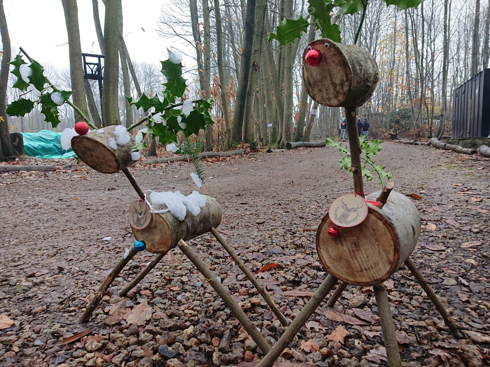 Take home Reindeer kits available for sale